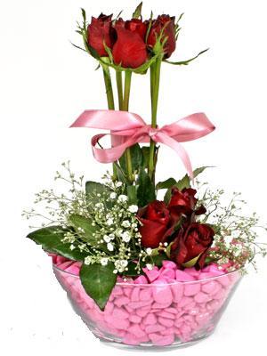 Dikmen Keklikpınarı çiçek siparişi vermek  SEVIYORUM DIYENLER 7 kirmizi gül tanzim