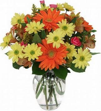 çiçekçi ankara Dikmen çiçek satışı  vazo içerisinde karışık mevsim çiçekleri