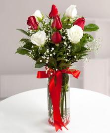 5 kırmızı 4 beyaz gül vazoda Dikmen İlkadım çiçek gönderme sitemiz güvenlidir