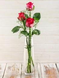 Cam içerisinde 3 kırmızı gül Ankara Dikmen 14 şubat sevgililer günü çiçek