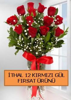 İthal kırmızı 12 adet kaliteli gül Dikmen Akpınar Ankara  hediye sevgilime hediye çiçek
