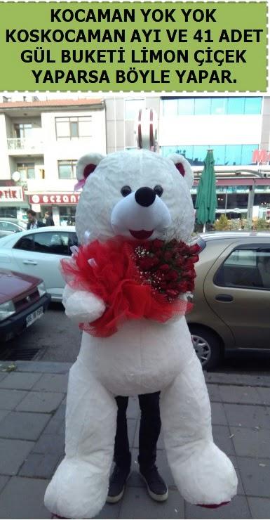 Koskocaman beyaz ayı ve 25 adet gül Dikmen ankara çiçek mağazası , çiçekçi adresleri