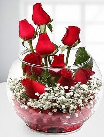 Kırmızı Mutluluk fanusta 9 kırmızı gül Dikmen ankara çiçek mağazası , çiçekçi adresleri