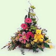 ankara çiçek yolla Dikmen malazgirt çiçekçi telefonları  lilyum gerbera oyuncak