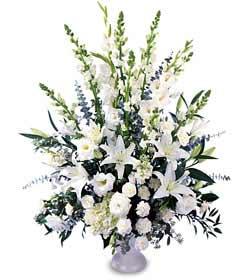 Ankara Dikmen İlker çiçek yolla , çiçek gönder , çiçekçi   saf temiz sevginin gücü çiçek modeli