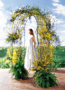 Ankara Dikmen kaliteli taze ve ucuz çiçekler  güller ve mevsim çiçegi