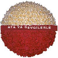 arma anitkabire - mozele için Ankara Dikmen Osmantemiz online çiçek gönderme sipariş