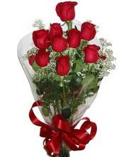 9 adet kaliteli kirmizi gül  Ankara Dikmen öveçler çiçekçiler