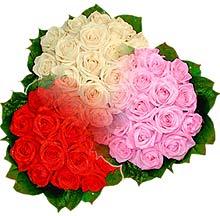 3 renkte gül seven sever  Öveçler Dikmen anneler günü çiçek yolla