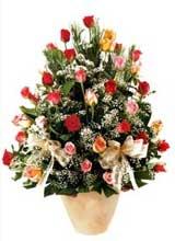 91 adet renkli gül aranjman  Ankara Dikmen Osmantemiz online çiçek gönderme sipariş