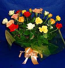 Dikmen Keklikpınarı çiçek online çiçek siparişi  13 adet karisik renkli güller