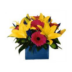 sepet içerisinde mevsim çiçeklerinden aranjman  ankara çiçekçi Dikmen ucuz çiçek gönder