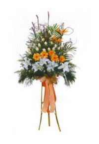 Ankara Dikmen Mürseluluç hediye çiçek yolla  Kazablanka, gerbera ve güllerle hazirlanmis ferfor