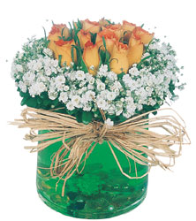 Ankara Dikmen kaliteli taze ve ucuz çiçekler  Cam yada mika içerisinde 9 adet  gül aranjmani