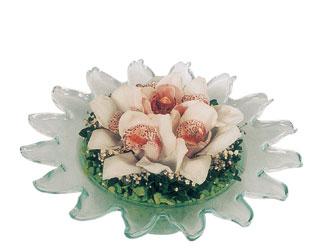 çiçekçi ankara Dikmen çiçek satışı  Cam içerisinde 3 adet kandil orkide