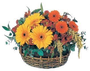 Ankara Dikmen cicekciler , cicek siparisi  karisik mevsim sepeti - mevsimsel çiçekler