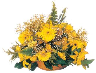 Dikmen Ankara çiçek gönder uluslararası çiçek gönderme  karisik mevsim sepeti - mevsimsel çiçekler
