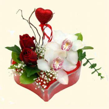 çiçekçi ankara Dikmen çiçek satışı  1 kandil orkide 5 adet kirmizi gül mika kalp