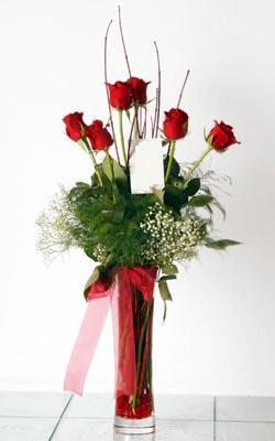 Dikmen İlkadım çiçek gönderme sitemiz güvenlidir  6 adet kirmizi gül ve cam yada mika vazo