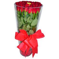 Dikmen Metin Akkuş çiçek satışı , çiçekçi , çiçekçilik  12 adet kirmizi gül cam yada mika vazo tanzim