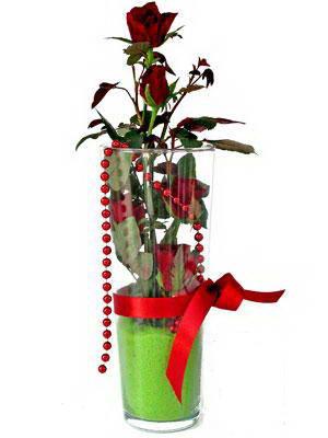 Ankara Dikmen İlker çiçek yolla , çiçek gönder , çiçekçi   Cam yada mika içerisinde 9 adet kirmizi gül - sevdiklerinize özel