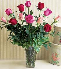 Ankara Dikmen Mürseluluç hediye çiçek yolla  12 adet karisik renkte gül cam yada mika vazoda