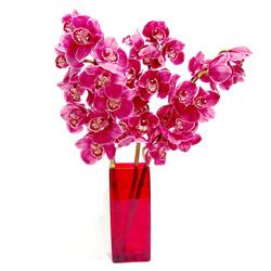 Dikmen Akpınar Ankara  hediye sevgilime hediye çiçek  Cam yada mika vazo içerisinde 3 adet dal orkide