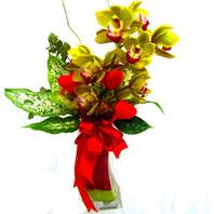Ankara Dikmen çiçek yolla  1 adet dal orkide ve cam yada mika vazo tanzim