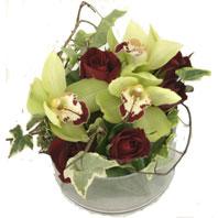 Dikmen Naciçakır çiçekçi mağazası  1 kandil orkide ve 5 adet kirmizi gül
