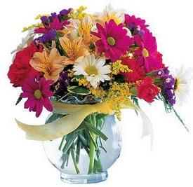 Ankara Dikmen kaliteli taze ve ucuz çiçekler  cam yada mika içerisinde karisik mevsim çiçekleri