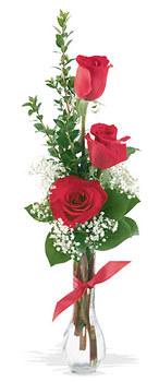 Dikmen İlkadım çiçek gönderme sitemiz güvenlidir  mika yada cam vazoda 3 adet kirmizi gül
