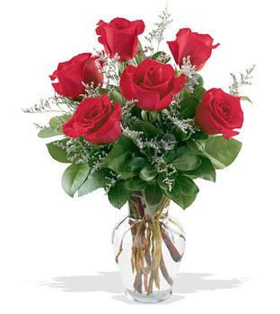 Dikmen İlkadım çiçek gönderme sitemiz güvenlidir  cam yada mika vazoda 6 adet kirmizi gül