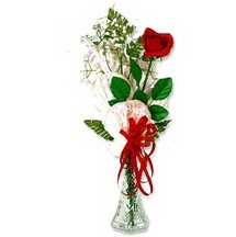 çiçekçi Dikmen çiçek servisi , çiçekçi adresleri  1 adet kirmizi gül cam yada mika vazoda