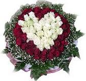 Ankara Dikmen Mürseluluç hediye çiçek yolla  27 adet kirmizi ve beyaz gül sepet içinde