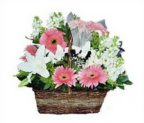 Yukarı Dikmen ankara çiçekleri güvenli kaliteli hızlı çiçek  karisik çiçekler sepet içerisinde