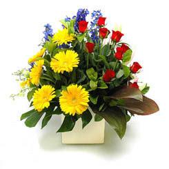 Ankara Dikmen İlker çiçek yolla , çiçek gönder , çiçekçi   9 adet gül ve kir çiçekleri cam yada mika vazoda