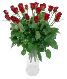 Dikmen Ankara çiçek gönder uluslararası çiçek gönderme  11 adet kimizi gülün ihtisami cam yada mika vazo modeli