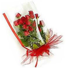 13 adet kirmizi gül buketi sevilenlere Ankara çiçek satışı Dikmen online çiçekçi , çiçek siparişi