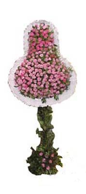 Dikmen Akpınar Ankara  hediye sevgilime hediye çiçek  dügün açilis çiçekleri Aşağı Dikmen ankara çiçekçi telefonları yurtiçi ve yurtdışı çiçek siparişi