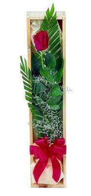 1 adet kutuda kirmizi gül Ankara Dikmen Osmantemiz online çiçek gönderme sipariş