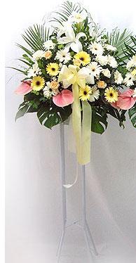 Ankara Dikmen İlker çiçek yolla , çiçek gönder , çiçekçi    perförje çiçegi dügün çiçekleri