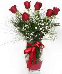7 adet gülden cam içerisinde güller Dikmen ankara çiçek siparişi çiçek gönderme