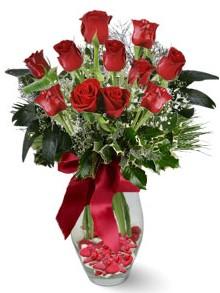 9 adet gül Ankara Dikmen kaliteli taze ve ucuz çiçekler  kirmizi gül