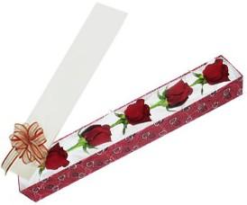 Ankara Dikmen kaliteli taze ve ucuz çiçekler  kutu içerisinde 5 adet kirmizi gül