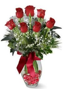 Aşağı Dikmen ankara çiçekçi telefonları yurtiçi ve yurtdışı çiçek siparişi  7 adet kirmizi gül cam vazo yada mika vazoda