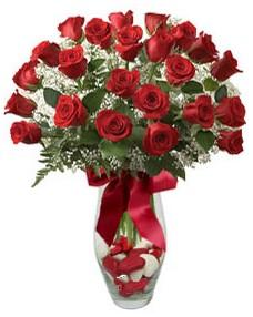 17 adet essiz kalitede kirmizi gül Ankara Dikmen Mürseluluç hediye çiçek yolla