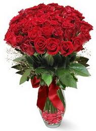 19 adet essiz kalitede kirmizi gül Dikmen ankara çiçek siparişi çiçek gönderme
