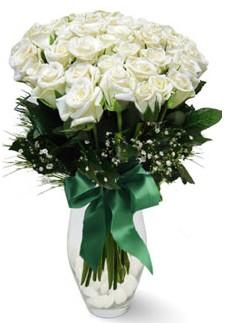 19 adet essiz kalitede beyaz gül Yukarı Dikmen ankara çiçekleri güvenli kaliteli hızlı çiçek
