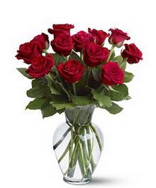 Ankara Dikmen Osmantemiz online çiçek gönderme sipariş  cam yada mika vazoda 10 kirmizi gül