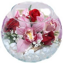 Dikmen Ankara çiçek gönder uluslararası çiçek gönderme  fanus içinde 1 kandil orkide 3 gül aranjmani